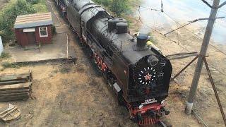 Московские и питерские паровозы в депо Подмосковная август 2014