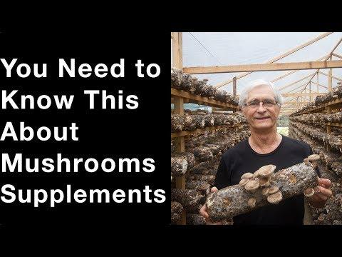 Mycelium on Grain Explained: What