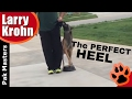 Fixing problems with competition heeling / Pak Masters Dog Training