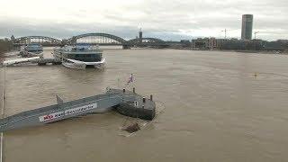 Hochwasser am Rhein: Köln zieht Flutschutztore hoch