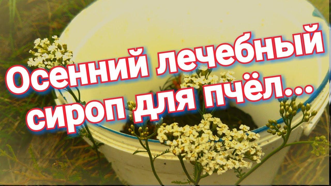 îndepărtați din nou condiloamele)