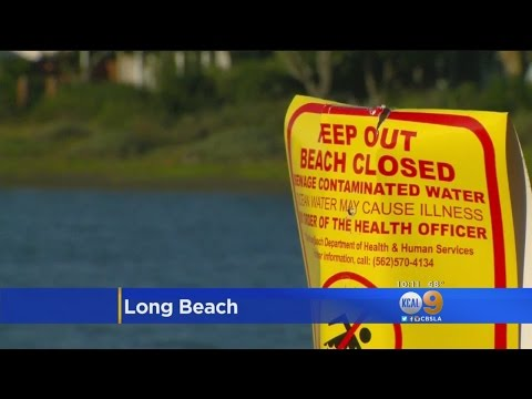 Long Beach Hopes To Tackle Water Pollution With Ambitious New Plan