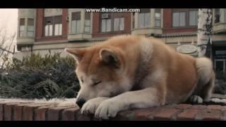 A musica mais triste do mundo com Hachiko :(