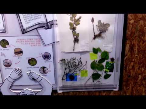 국립생물자원관, National Institute of Biological Resources (NIBR) ,  Biodiversity, 생물다양성