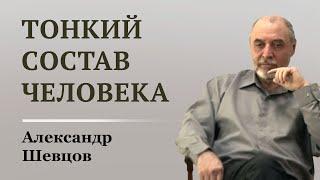 Устройство тонкого состава человека. Александр Шевцов
