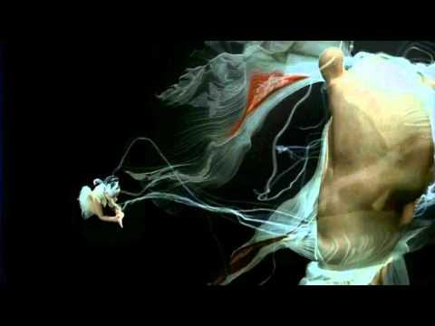 Bjork - Show Me Forgiveness - Zamilska Remix
