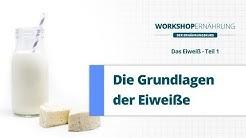 EIWEI (1/4): Grundlagen und Stoffwechsel | Workshop Ernhrung