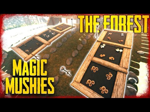 MUSHROOM GARDENS OUT OF CAVES - S5 EP37 | The Forest