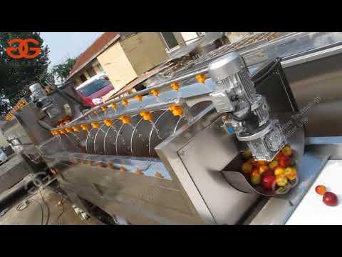 Automatic Fruit Juice Processing Plant Manufacturer Cost