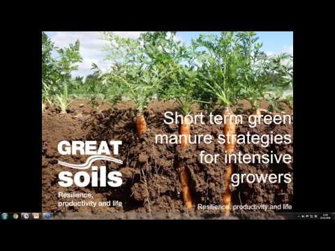 GREATsoils  Short term green manure strategies for intensive growers