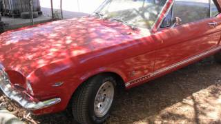Found a Wrecked Restored 1965 mustang GT in a Junk Yard