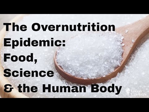 The Overnutrition Epidemic | Food, Science & the Human Body | National Geographic &The Great Courses