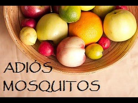 Remedio Rápido Y Fácil Para Acabar Con Los Mosquitos De La Fruta Youtube