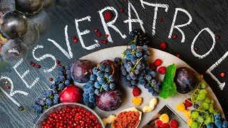 Is Resveratrol The Fountain of Youth?