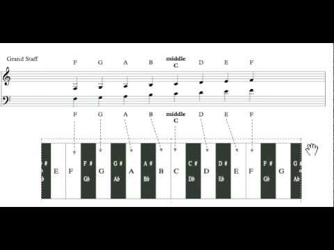 VIDEO LESSON 04 - WESTERN STAFF NOTATION (Architectures of Music)