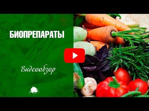 Биопрепараты для защиты садовых растений от вредителей ✅ Дача сад и огород с Хитсад