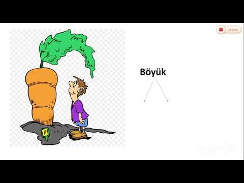 Azərbaycan dili - Yaxınmənalı və əksmənalı sözlər