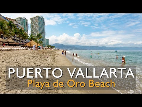 20 minute walk along Playa de Oro Beach, Puerto Vallarta Hotel Zone