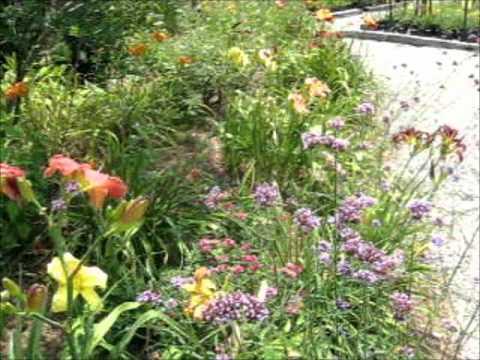 Joellens Garden Dedication Video   Smithfield Gardens