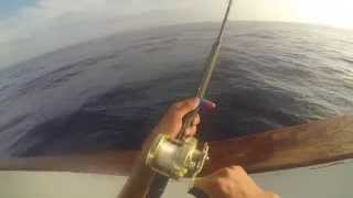 Surface Iron Fishing on the Red Rooster III HD