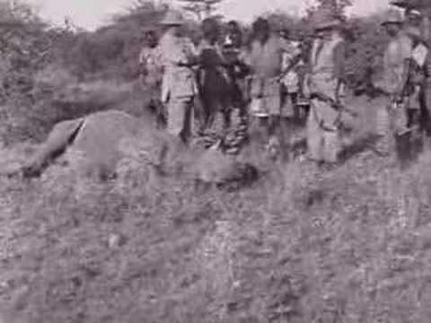 George Eastman - Rhino Charge