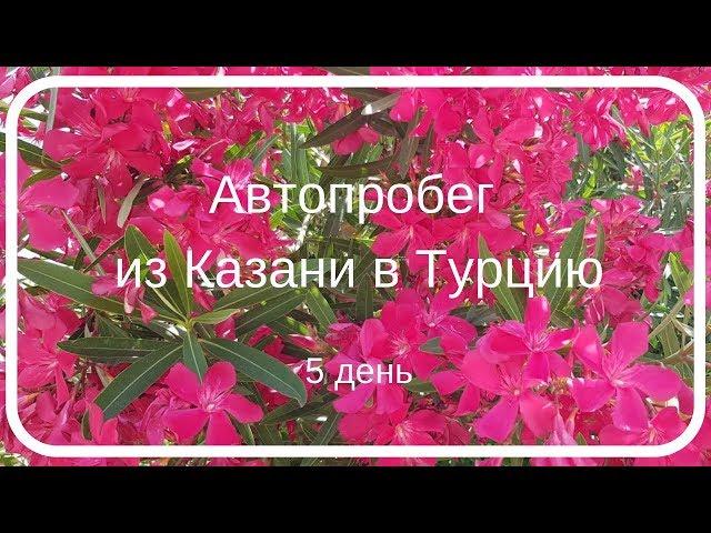 Из Казани в Турцию. ПЯТЫЙ ДЕНЬ АВТОПРОБЕГА – ЧП В ПУТИ