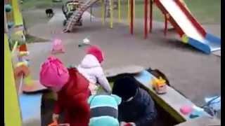 Кот защитник детей и женщин! Кот против Собаки на детской площадке. ЖИВОТНЫЙ МИР