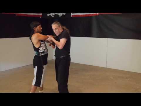 Double Tok Sao – Wing Chun's Lifting Hand