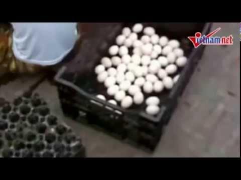 Tẩy trắng trứng gà Trung Quốc để biến thành trứng gà Ta