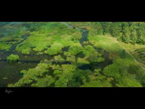Beautiful Aerial Video of the Jordan River and Lake Kinneret