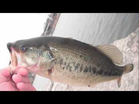 Fishing Hamilton Ontario