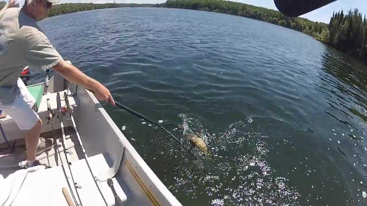 Smallmouth bass fishing rainy lake canada youtube for Rainy lake fishing report