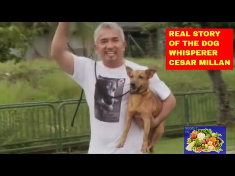 Real Story of the dog whisperer Cesar Millan, success and fails!