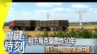 租下烏克蘭農地50年 買下世界糧倉的飢餓中國?!2013年第1671集 2300 關鍵時刻