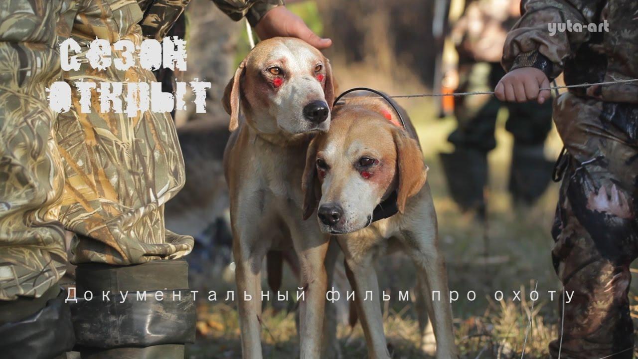документальные фильмы об охоте