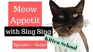 This funny Cat eats anything...even salad!