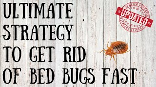 How to Get Rid of Bed Bugs Yourself | Quick Tips for Killing Bed Bugs Naturally(How to get rid of bed bugs - http://www.ChippTips.com/bedbugs Do you need quick tips on how to kill bed bugs yourself? Contrary to popular belief, they are not ..., 2014-01-12T00:41:29.000Z)