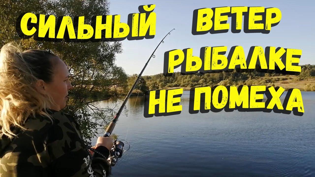 Вечерняя рыбалка в сильный ветер отчет