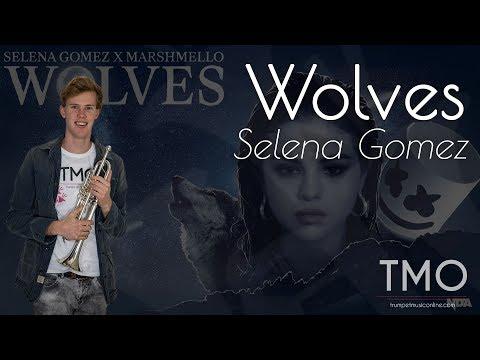 Selena Gomez, Marshmellow - Wolves (TMO 360 ° )