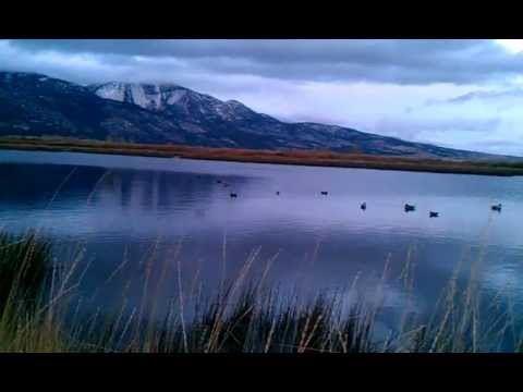 Nevada Duck Hunting Washoe Valley