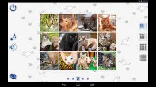 Jigsaw Puzzles: Cats