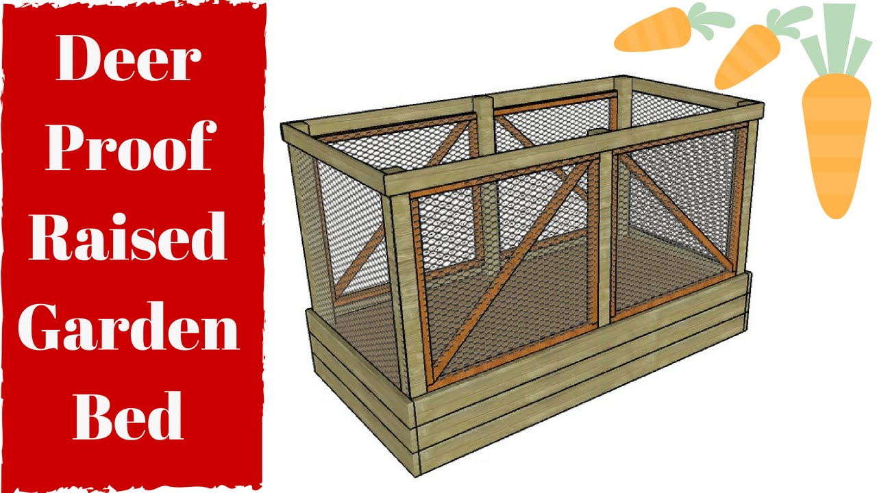 Deer Proof Raised Garden Bed Plans Free