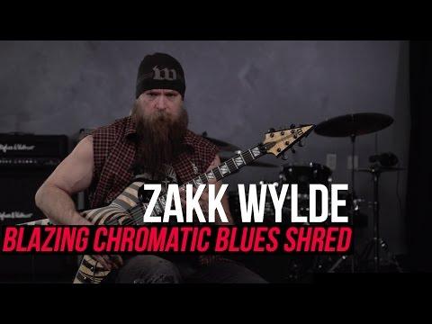 Zakk Wylde - Blazing Fast Chromatic Blues Shred Lick!
