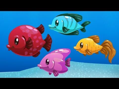 Akvaryum Balıkları - Rengarenk Süslü Balıklar | Çocuklar Için Eğlenceli Video |