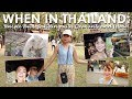WHEN IN THAILAND Temple Tour Bonding With Elephants And More Jodi Sta Maria mp3