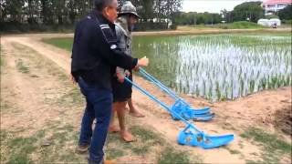 Weeder for paddy field in Thailand