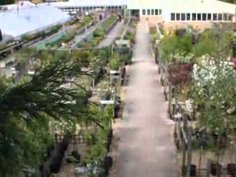 Garden Centres - Langford Garden Centre