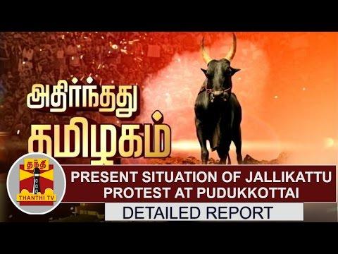DETAILED REPORT: Present situation of Jallikattu protest at Pudukkottai | Thanthi TV