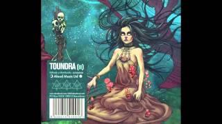 Toundra - Cielo Negro (Black Sky)