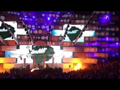 Sam Feldt - Sunrise Festival